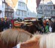Leonberger Pferdemarkt