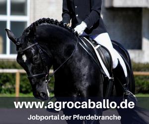 www.agrocaballo.de - Jobportal der Pferdebranche